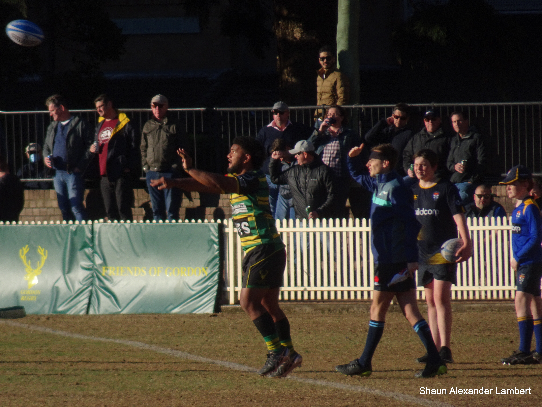 Gordon's Mahe Vailanu throws into the lineout v Sydney University at Chatswood Oval